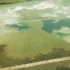 n_harasz_bch_reflections4