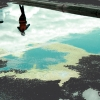 n_harasz_bch_reflections7