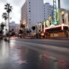 n_harasz_hollywood_blvd2