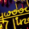n_harasz_hollywood_neon_upclose14